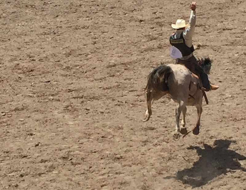 Prca Rodeo Schedule In Montana August 2017 Wyoming In