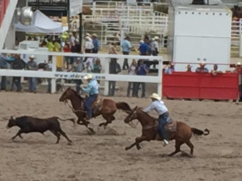 Prca Rodeo Schedule In Utah August 2017 Wyoming In