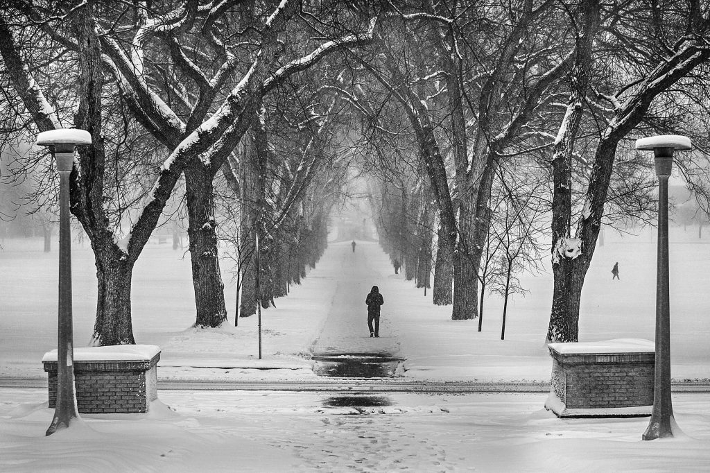 The Oval During a Snow Storm